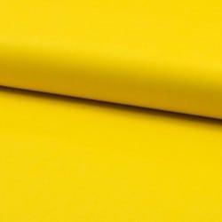Κίτρινο Μονόχρωμο