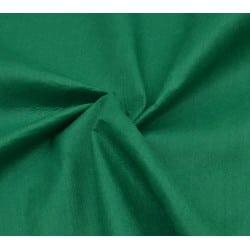 Φετρίνα Πράσινη
